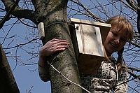 Как сделать скворечник для птиц своими руками